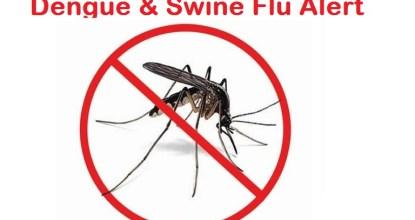 8 Out of 100 people has swine flu in Tamil Nadu 73 Behind History