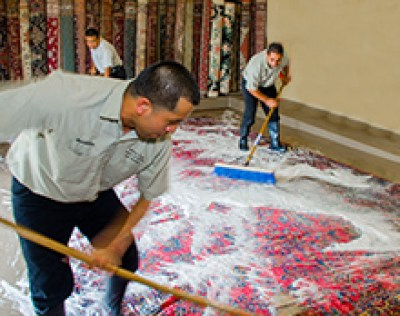 Rug Cleaning an area rug