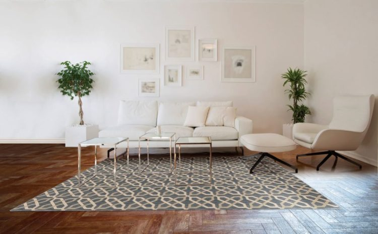 Chic and Inexpensive Machine Made Rug