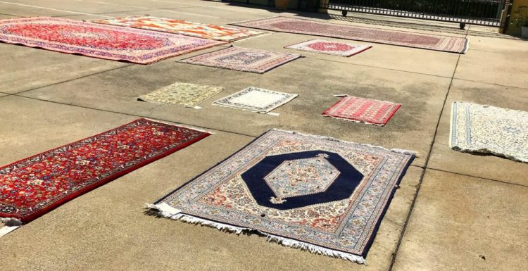 Drying Rugs on Flat Surface