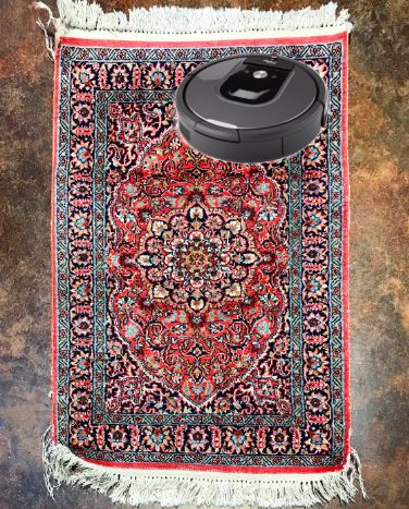 Roomba on a Rug
