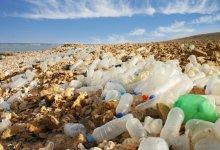 صورة خطورة المنتجات البلاستيكية على البيئة والإنسان