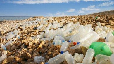 صورة النفايات في العراق ثروة إقتصادية مهملة .