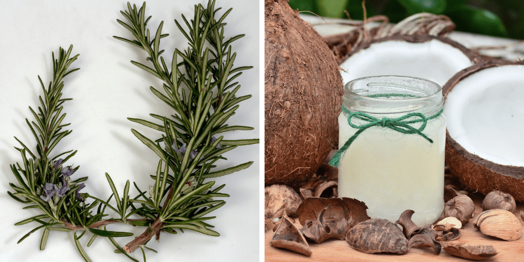 hair growth remedies - rosemary coconut