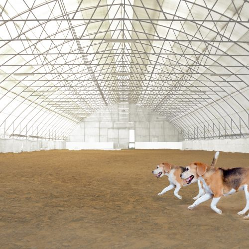 Indoor riding hall and equestrian center for trainings and events