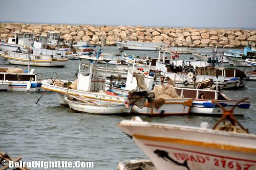 El Mina-Discover the North and Sea Festival 2010