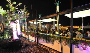 Mywaterfront: Zaitunay Bay's Favorite Champagne Bar