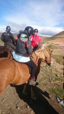 Delar av hästgänget