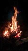 Skogsbrand!