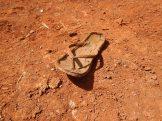 Någon som tappat sin sko?