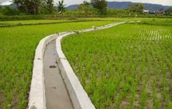 Kajian Proses Penguatan Pengelolaan Kelembagaan Irigasi Yang Berwawasan Lingkungan