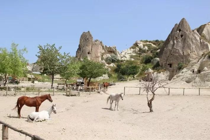 horse riding, what to do in Cappadocia, Turkey