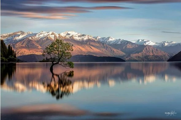 whatmarkshoots_lake wanaka_new zealand