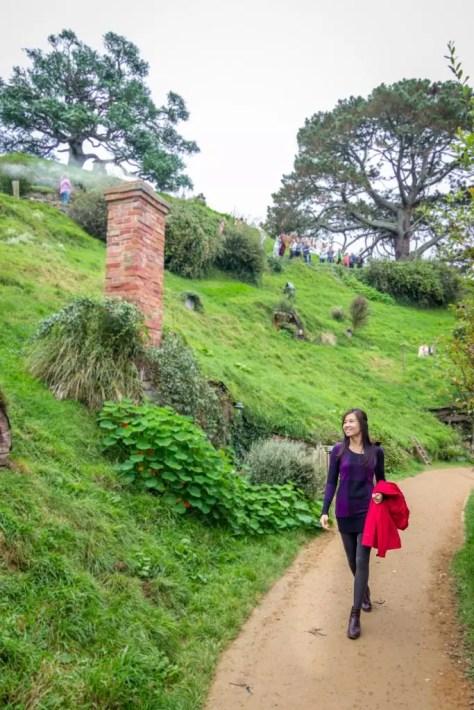 Hobbiton Movie Set Tour Lord of The Rings Matamata walk