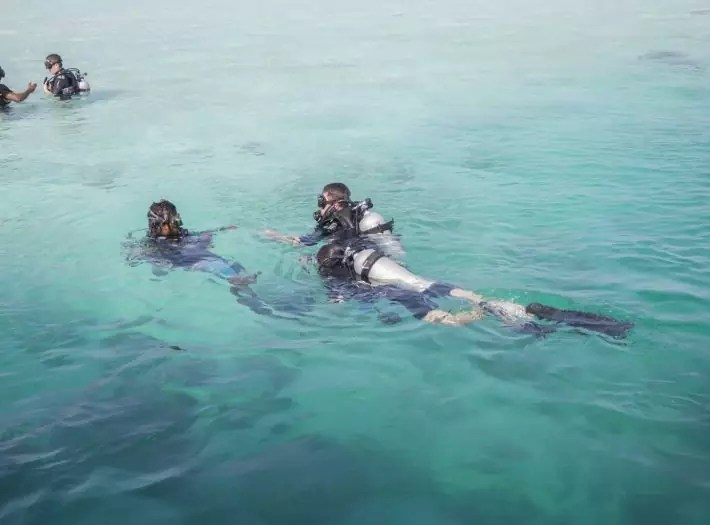 Maldives budget Maafushi diving