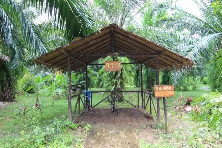 anurak community lodge khao sok national park bike hut