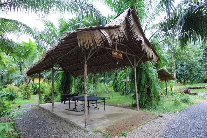 anurak community lodge khao sok national park games hut