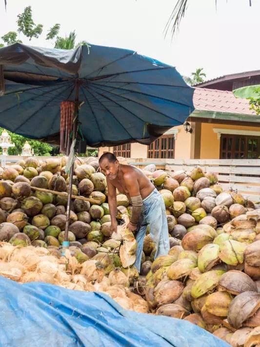 make coconut, Day trips from Bangkok -Amphawa Floating Market, Maeklong Railway Market, Ban Bang Phlap