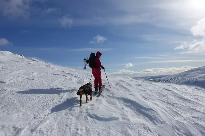 skiing,-husky-sleigh-ride,-snow,-Things-to-Do-in-Lapland,-where-is-lapland