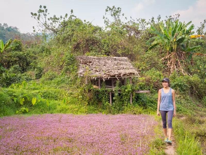 trekking-Luang-Namtha-Laos-Homestay-Nam-Ha