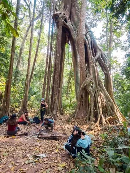 making fire, trekking-Luang-Namtha-Laos-Homestay-Nam-Ha