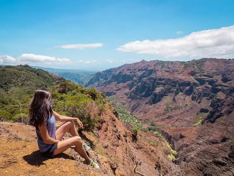 waimea-canyon-viewpoint-best-hikes-in-kauai-hawaii