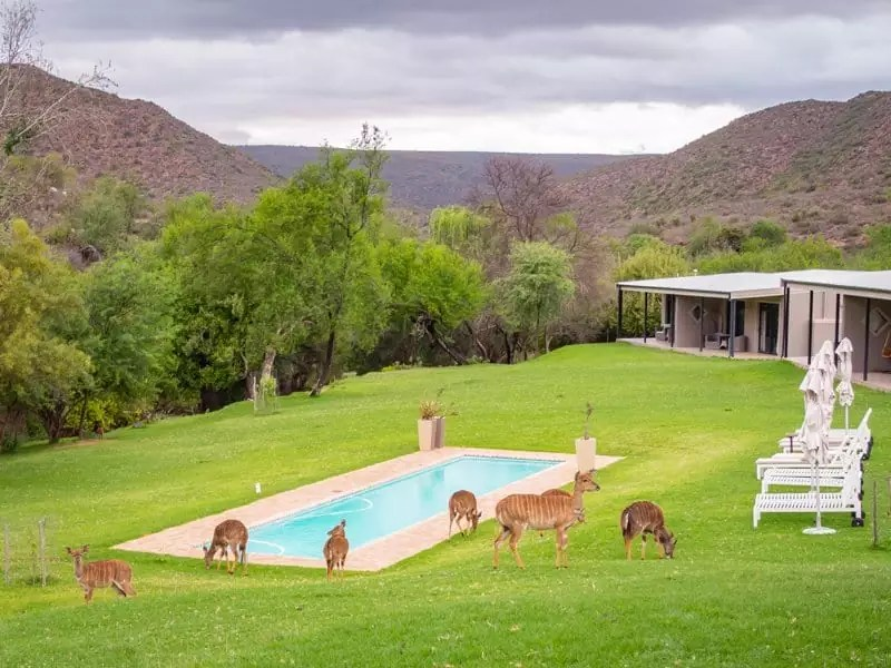Wildehondekloof-Oodtshoorn-south-africa