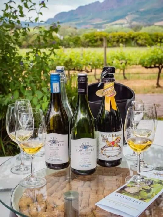 wine-tasting-stellenbosch-Franschhoek-south-africa