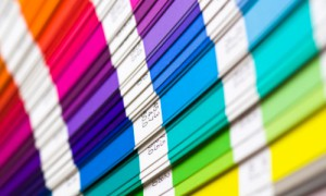 qué colores son los más empleados en el formato de un currículum