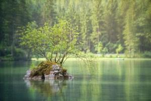 meditation calme