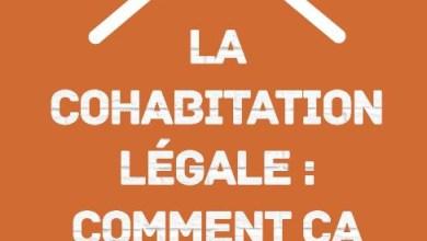 صورة بالتفصيل : كل ما تريد معرفته عن علاقة المعاشرة القانونية في بلجيكا