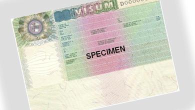 صورة تعرف على التأشيرة الإنسانية على أساس الوصاية