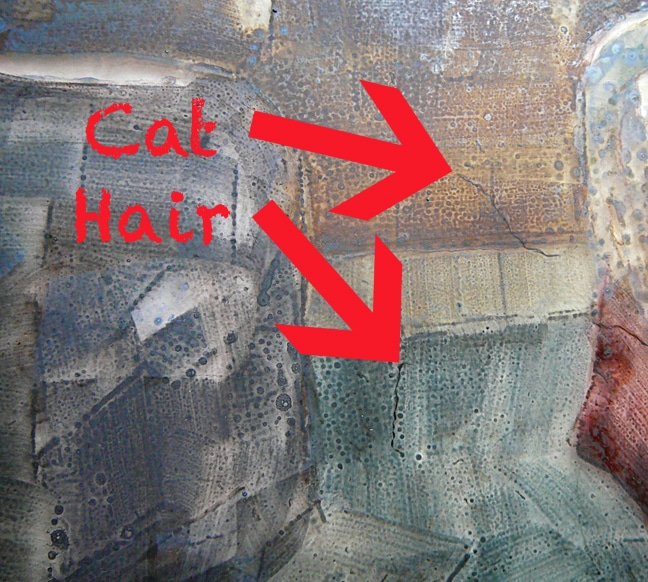 hair in the paint