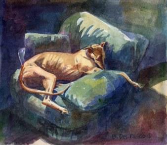 greyhoundlounger72