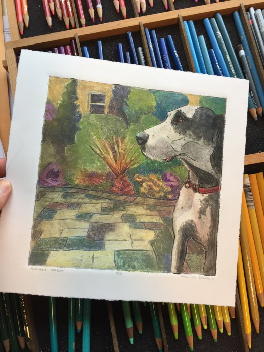 A color collagraph of a great dane dog in profile, with trays of colored pencils in the background