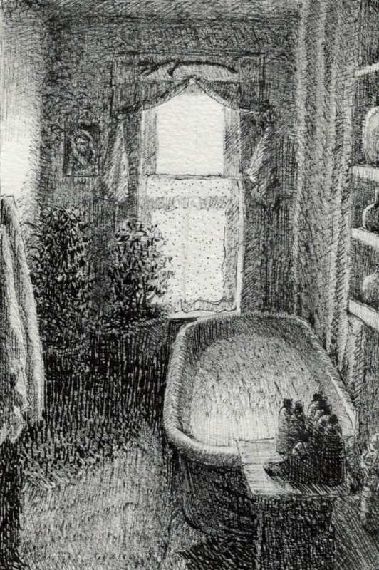 a bathtub in a narrow room with a window on the back wall and plants by the sill