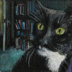 librarycat.3.10.300