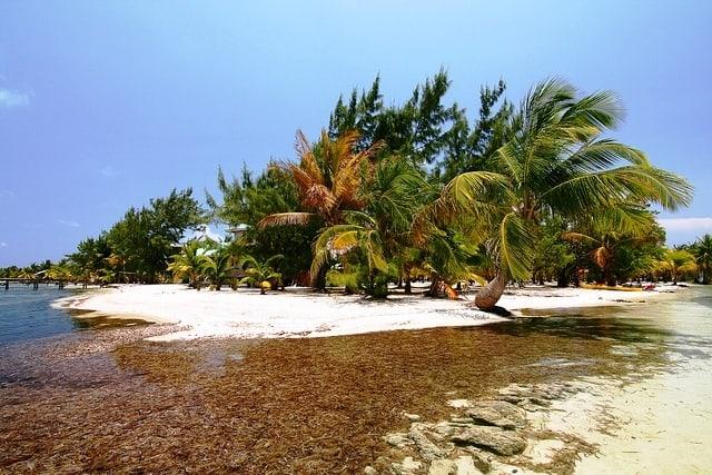 Glover's Reef Belize