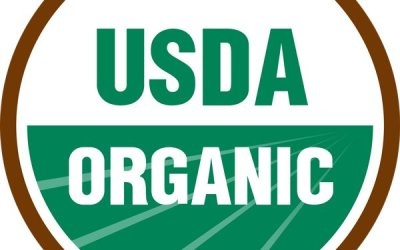 What you should to know about Organic Cosmetics.
