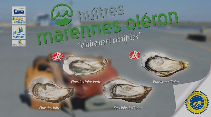 huitres-marennes-oleron-modif 800x443