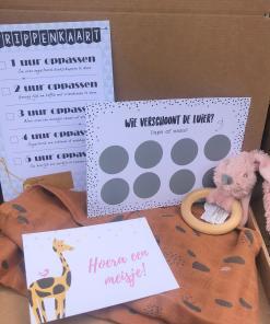 Cadeau set - Brievenbus cadeau pakket - Hoera een Meisje - Happy Horse Super leuk cadeau setje om te geven aan de leukste opa, gevuld met tas voor iemand die zwanger is of net bevallen is Gevuld met Jollein hydrofiel luier - Oppas strippenkaart, Wie verschoont de luier kras kaart en een super leuke bijtring van Happy Horse oud roze Is zo te versturen door de brievenbus Let op: Dit kan niet in gepakt worden, het is al een heel leuk cadeautje op zich.. Als je het in laat pakken past het niet meer door de brievenbus en moet je het als pakket laten verzenden.
