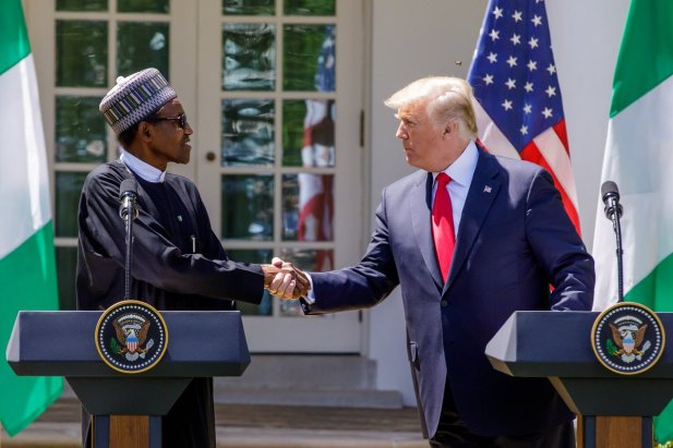 Image result for Buhari meets Donald Trump at White House