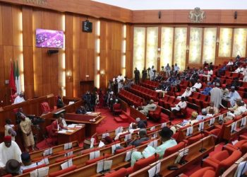 Sowore: The Senate is Investigating the DSS Court Invasion