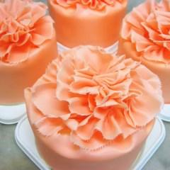母の日限定 カーネーションケーキ