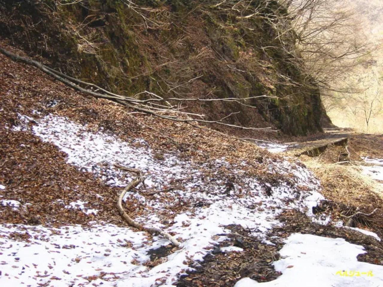 tokuyama00004 - 揖斐川上流・旧徳山村での岩魚釣り