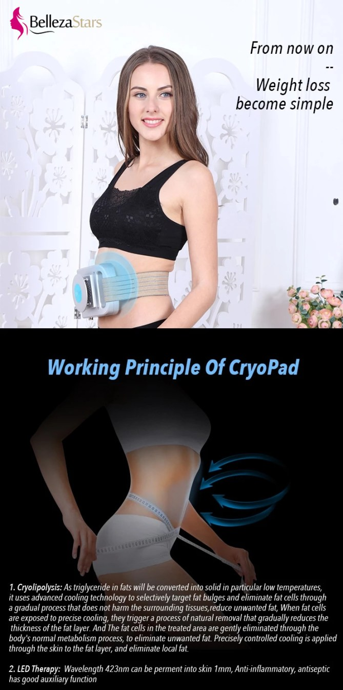 working principle of cryopad weight loss