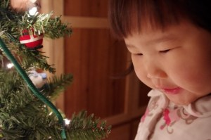 Penelope carefully determining the placement of ornaments on the tree.