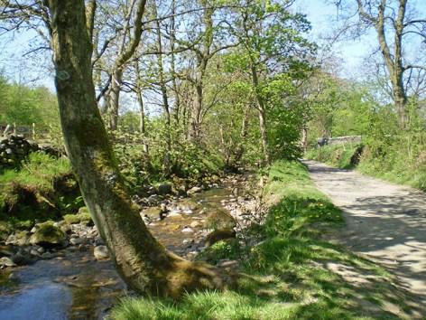 Gimmerton Valley near Thrushcross Park