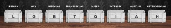 LGBTQ Sexuality