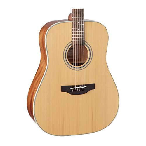 Takamine GD20-NS Dreadnought Acoustic Guitar, Natural - Recording Studio - 1